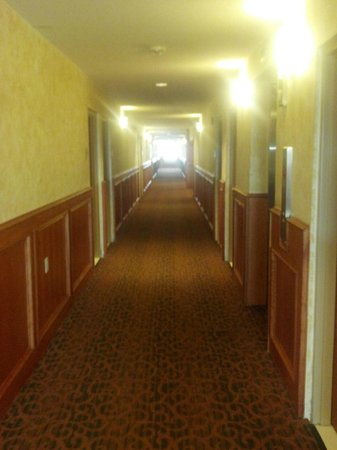 Comfort Inn :                   Second Floor Hall
