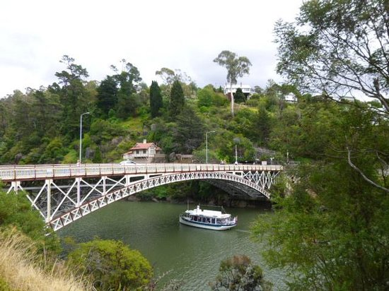 Tamar River:                   Take the boat up the Gorge