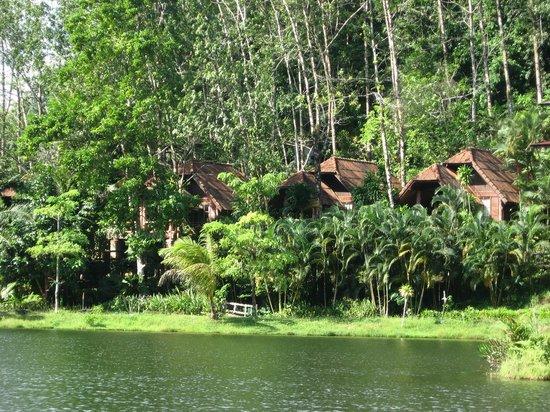 Kuraburi Greenview Resort:                   View of some more chalets