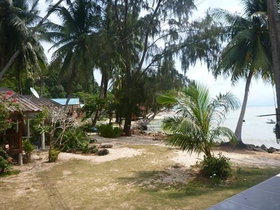 Blue Lotus Resort:                   front beach