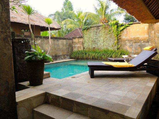 Barong Resort and Spa:                   private pool of villa