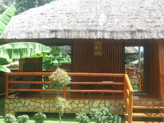 Dream Native Resort :                   bungalow