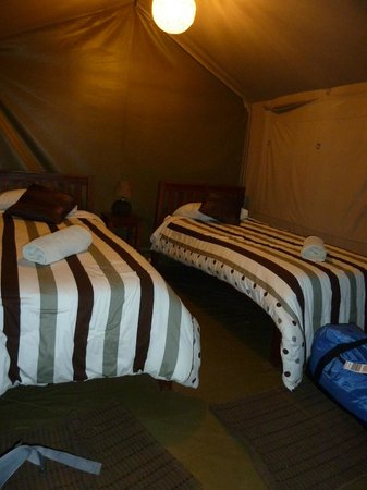 Wildebeest Eco Camp: Inside the garden tent