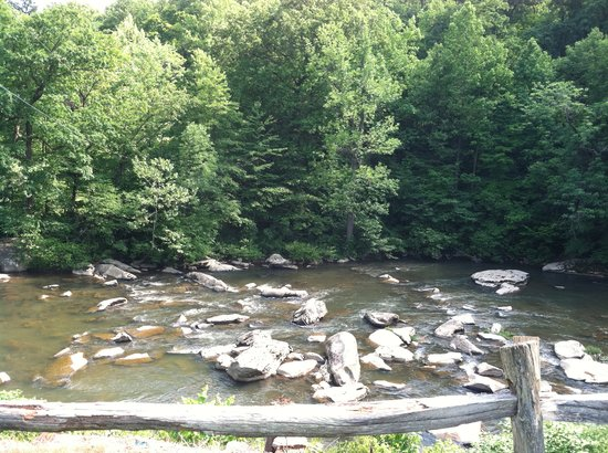 The Road Toad: our view of the Loyalhanna Stream