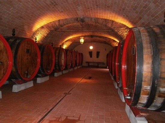 Dimora Casa Eugenia:                                     Local wine cellar tour