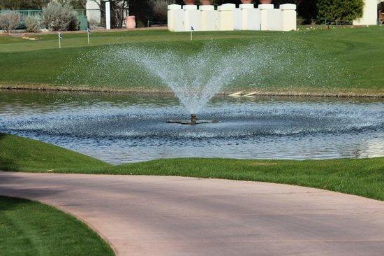 Arizona Grand Resort & Spa照片