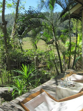 Gims Resort :                   Autour du bungalow