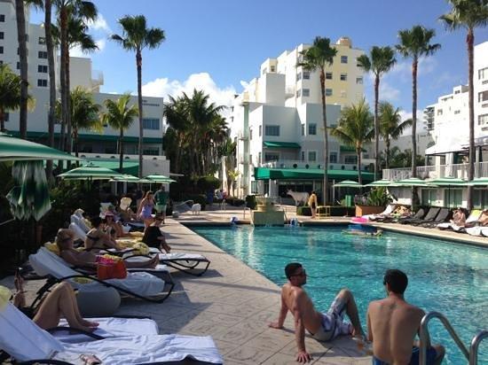 Kimpton Surfcomber Hotel:                   pool