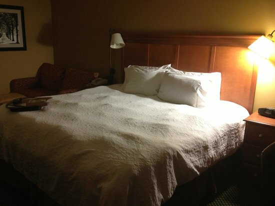 Hampton Inn Pittsburgh/Greentree:                   Bed