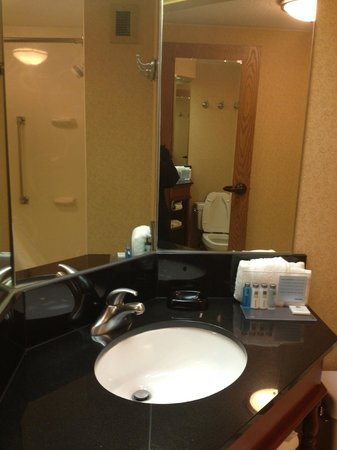 Hampton Inn Pittsburgh Greentree:                   Bathroom