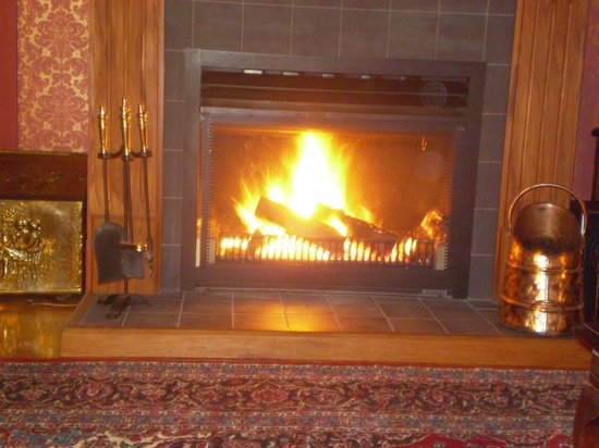 Willow Lodge: Guest lounge winter warmer
