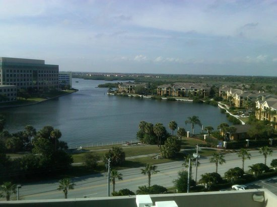 westin tampa bay view from hotel room picture of the. Black Bedroom Furniture Sets. Home Design Ideas