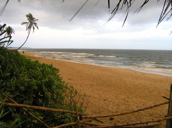 Cinnabar Resort:                   Blick vom Restaurant aufs Meer