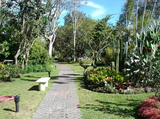 Hotel Bougainvillea:                   Gardens
