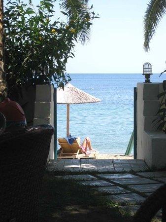 Swell Beach Bar:                   entrance