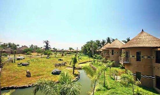 Mara River Safari Lodge :                   Grounds