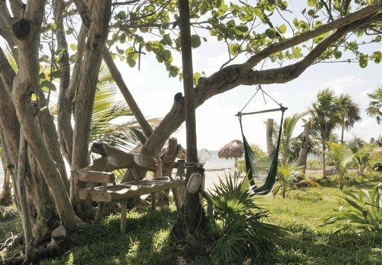 Hotel Maya Luna:                   nice hangout