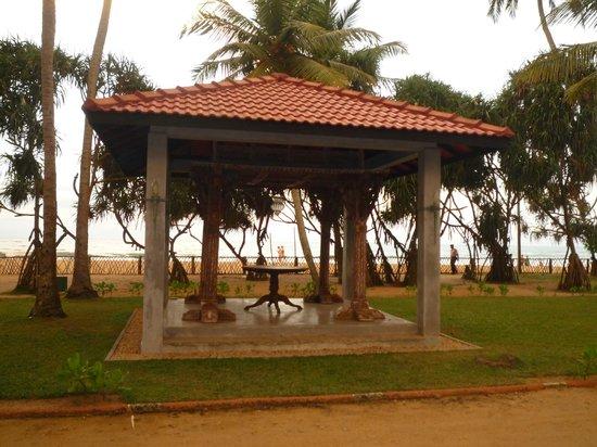 Royal Palms Beach Hotel:                   Hotel grounds