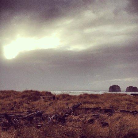 Ocean Rogue Inn :                   view from back yard