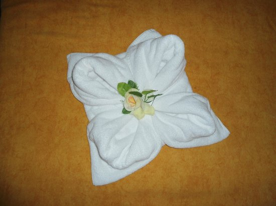 Diseno De Interiores De Casa Enrisolcom - Decoracion-con-toallas
