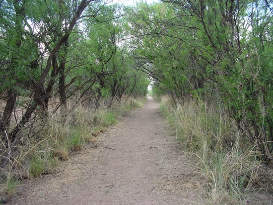 Fairbank :                   on the trail