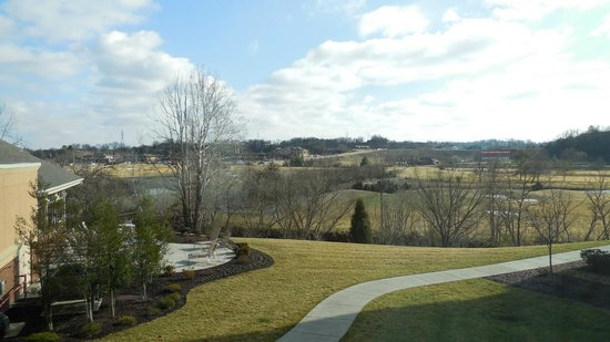 Marriott MeadowView Conference Resort & Convention Center:                   scenery