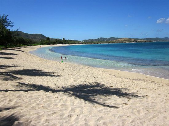 The Buccaneer -- St Croix:                   The main beach area