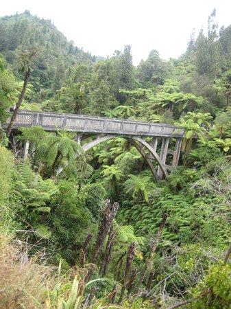 Bridge to Nowhere Tours:                   The Bridge to Nowhere