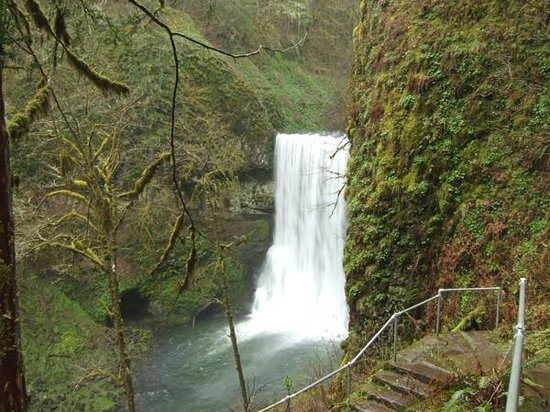 Silver Falls State Park :                   Lower South Falls