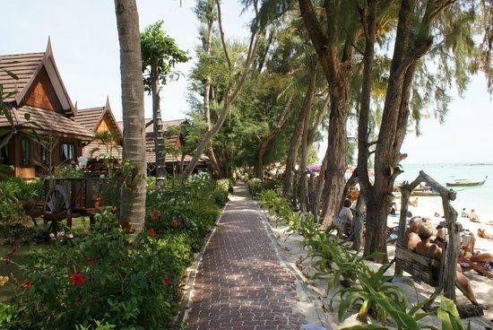 Phi Phi Paradise Pearl Resort:                   bord de mer