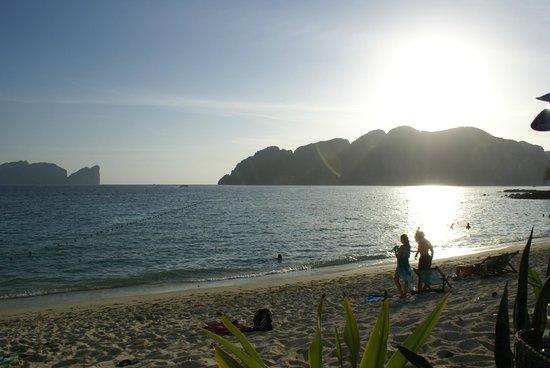 Phi Phi Paradise Pearl Resort:                   plage