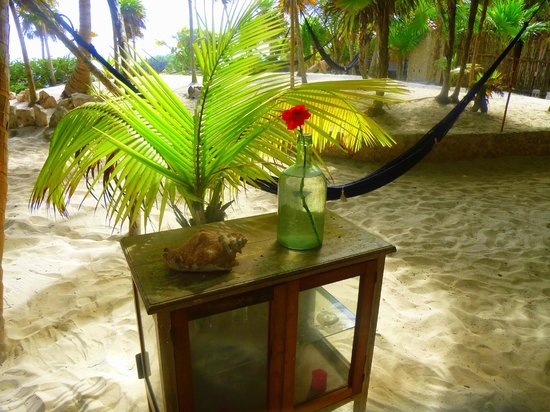Playa Esperanza :                   This was in the dining area.  Like I said, you are always on the sand...LOVE!