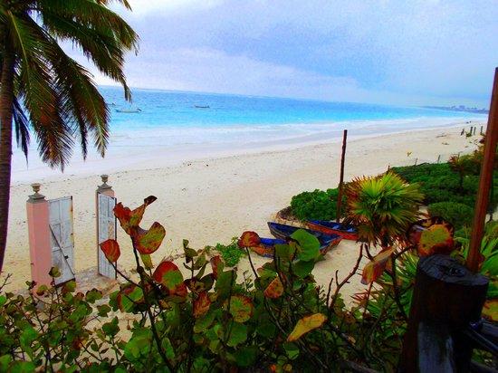 Playa Esperanza:                   View from our room deck (cabana Josepha)