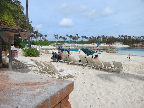 Bahamas Marine Adventure:                   Pool side