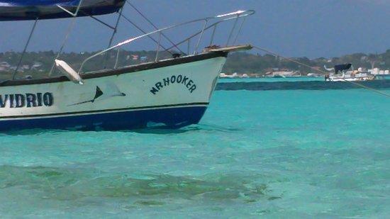 Royal Decameron Marazul :                   acuario