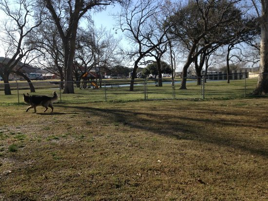 Buckhorn Lake Resort:                   Wooded area by water with dog play area