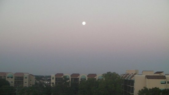 Vacation Village at Bonaventure:                   Moonrise over Weston