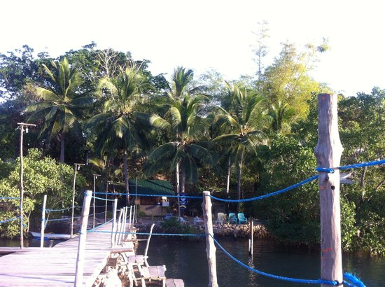 Discovery Island Resort and Dive Center : The pier
