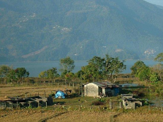 วอเตอร์ ฟรอนท์ รีสอร์ท: View of farmland from hotel window