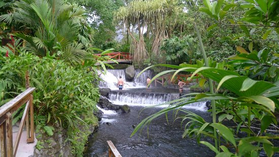 Tabacon Grand Spa Costa Rica Tripadvisor