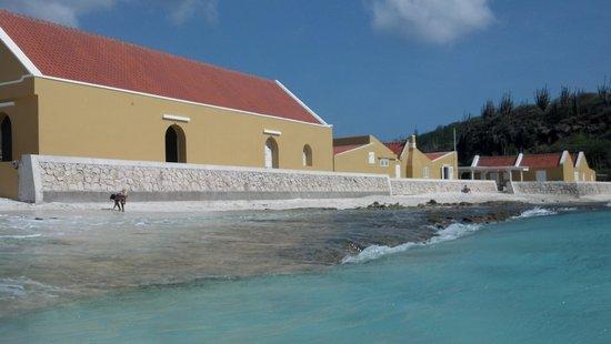 Boca Slagbaai: the restaurant and cliff jumping