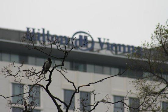 Hilton Vienna Stadtpark