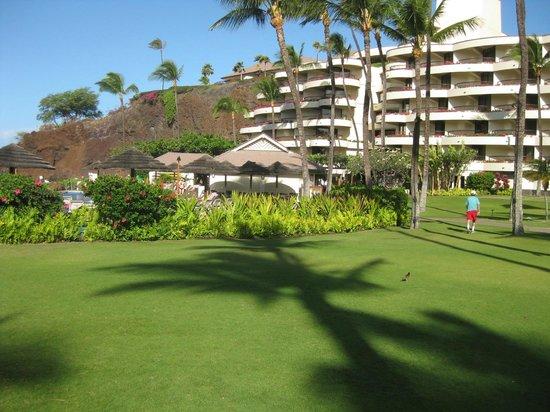 Sheraton Maui Resort & Spa: nicely kept grounds