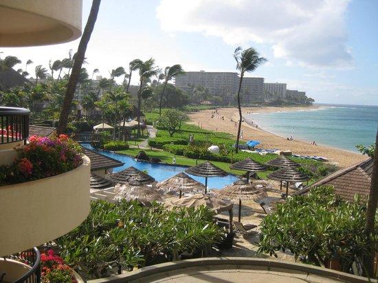 Sheraton Maui Resort & Spa: killer views