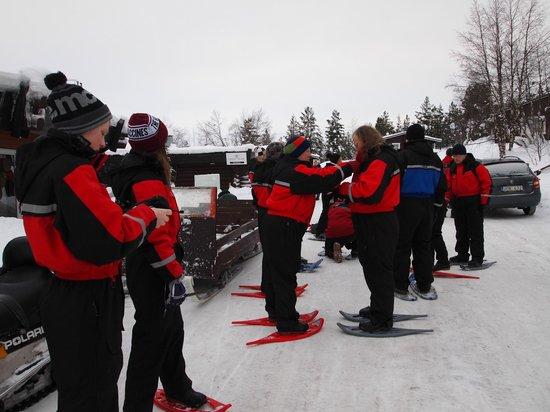 Davvi Arctic Lodge:                   snow shoeing