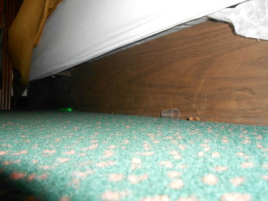 Wellinton Retreat: Pen, dirt and spray top debris under bed cover