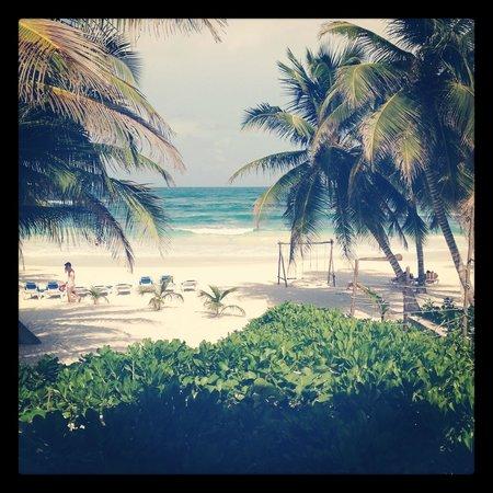 Cabanas Tulum:                                     View from cabana