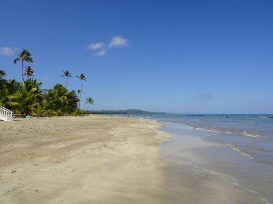Grand Bahia Principe San Juan:                   view down the enormous beach