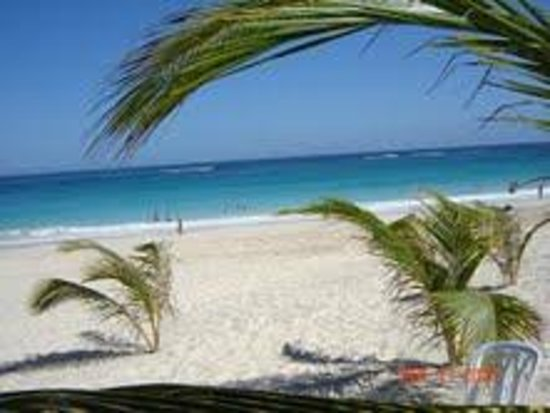 Occidental Caribe:                   BARCELO PUNTA CANA BEACH