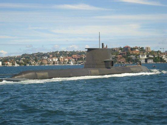 Manly Beach:                   A submarine!